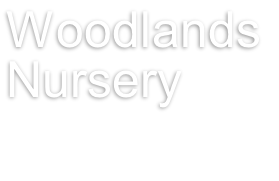 Woodlands  Nursery